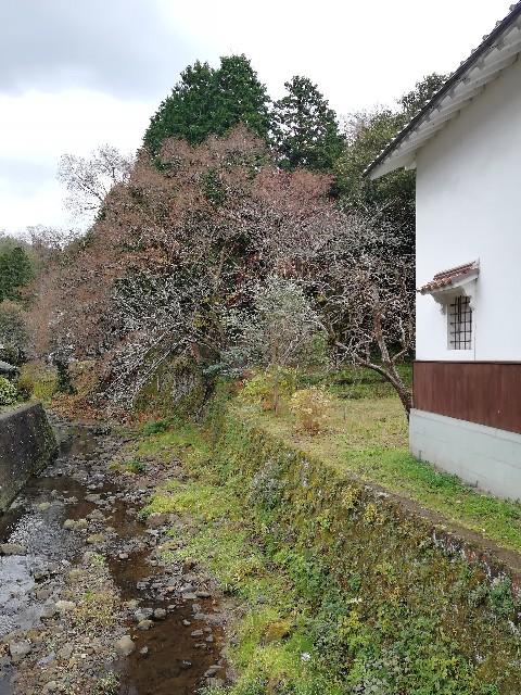 f:id:nagatchi-fm:20201222205802j:image