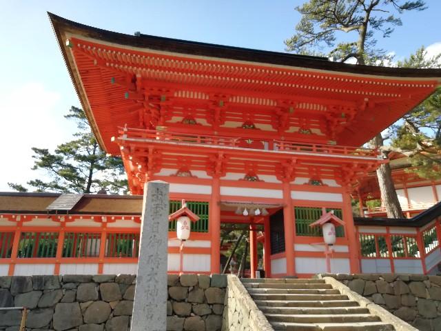 f:id:nagatchi-fm:20210202210721j:image