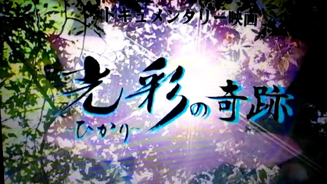 f:id:nagatchi-fm:20210214234419j:image