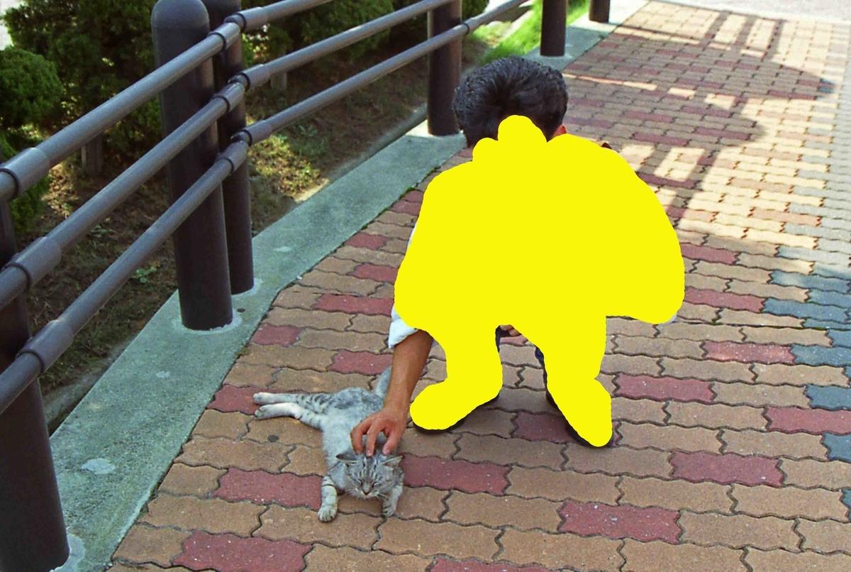f:id:nagee4678:20200602085318j:plain