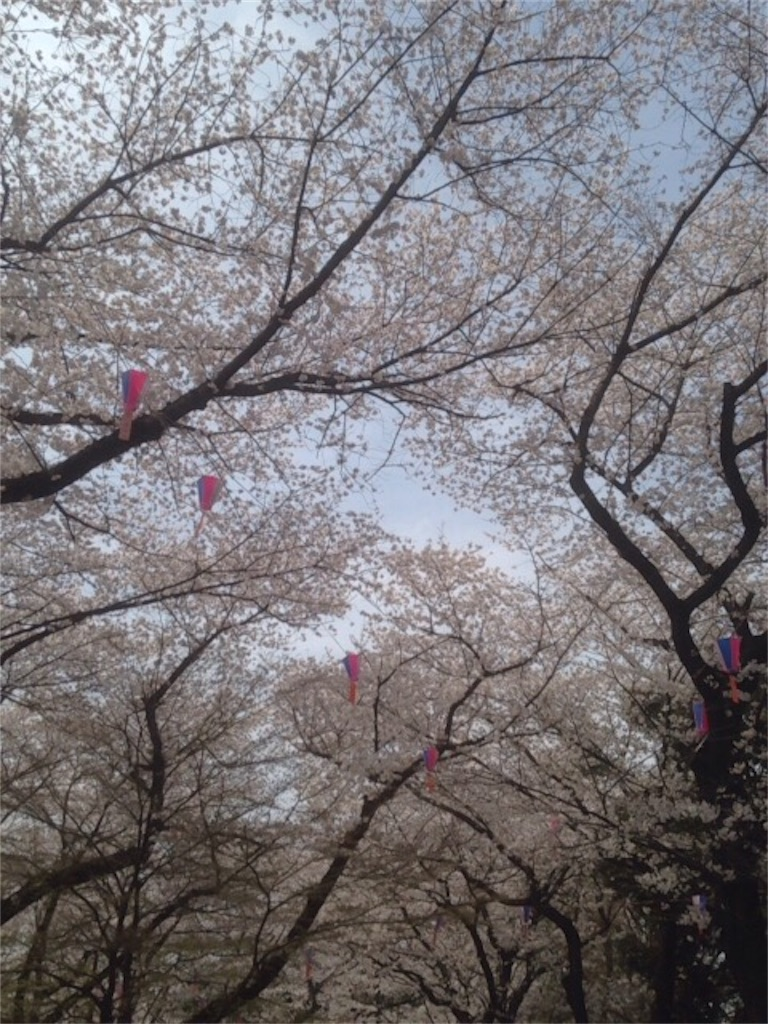 f:id:nagi_narico:20180327202058j:image