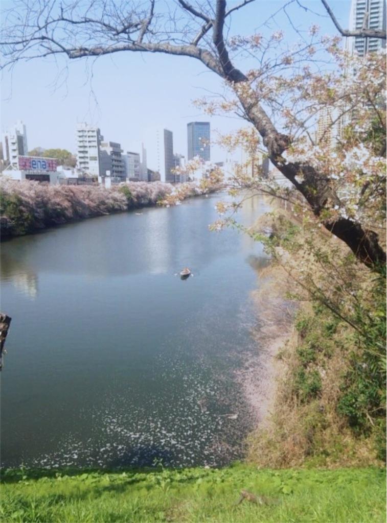 f:id:nagi_narico:20180331221244j:image