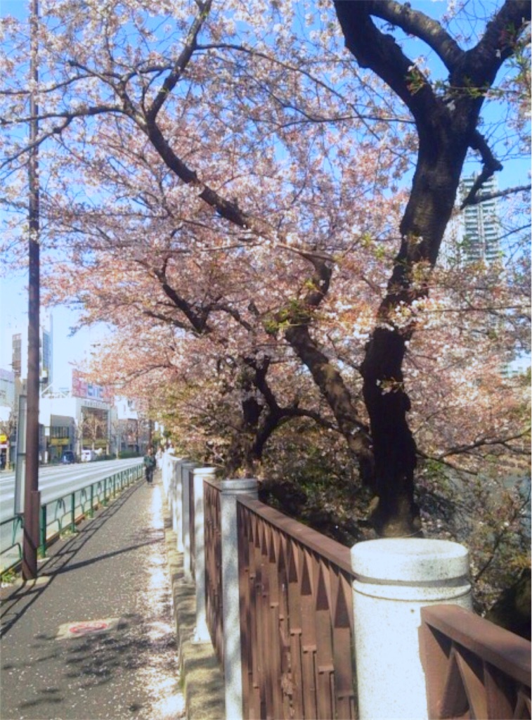 f:id:nagi_narico:20180331221326j:image