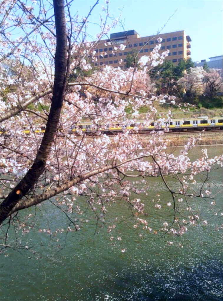 f:id:nagi_narico:20180331221353j:image