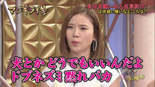 f:id:nagi_x_nagi:20161231152235j:plain