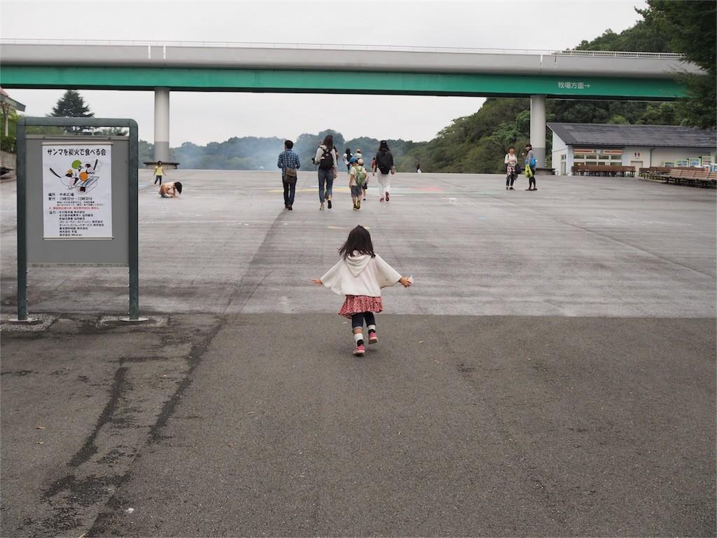 f:id:nagiken:20160925115738j:image