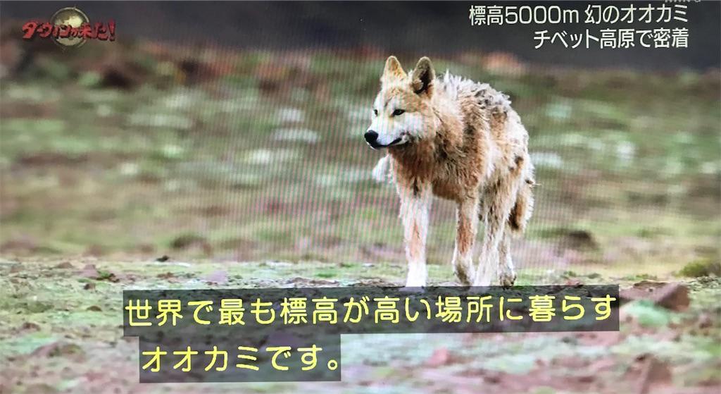 f:id:nagisaseer:20210113225237j:image
