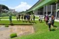 [沖縄][名護][稲作][名護博物館友の会][名護博物館][ぶりでぃ子ども博物館]H24② 稲作講座