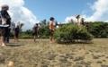 [沖縄][名護][自然][ぶりでぃ子ども博物館]屋我地島干潟