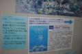 [沖縄][名護博物館][大浦湾][すなっくスナフキン]アクアマリン説明_web.JPG