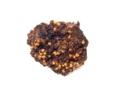 [沖縄][名護][名護博物館][植物]オリイオオコウモリのペリット(イヌビワ)
