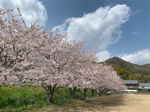 f:id:nagomi0716:20190418080912j:image