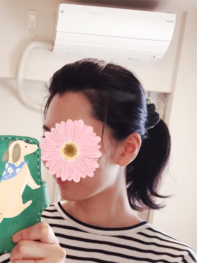 f:id:nagomigaki:20170627124043j:image