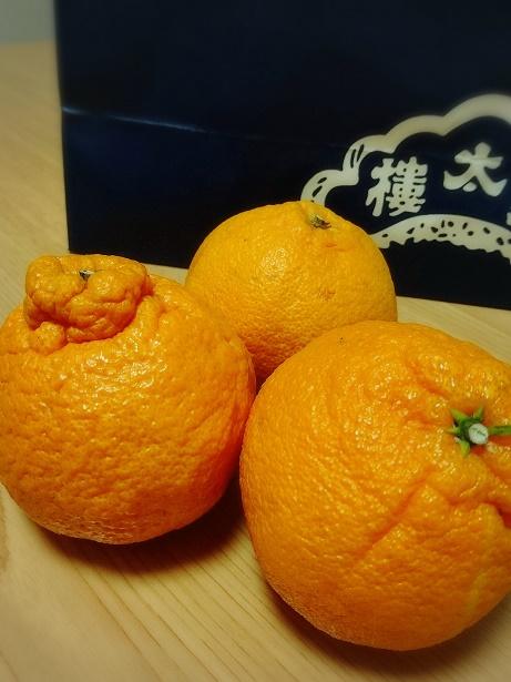 f:id:nagomikituke:20170330195503j:plain