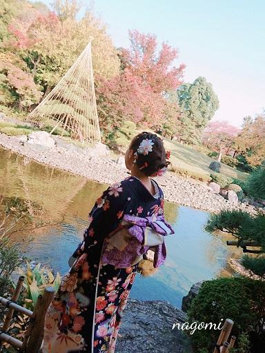 f:id:nagomikituke:20171105132906j:plain