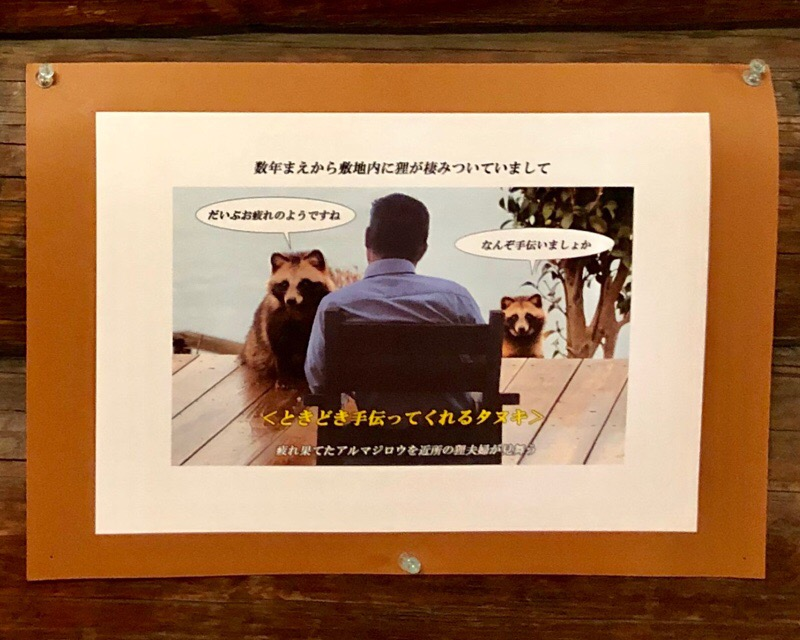 f:id:nagomissblog:20190122151918j:plain