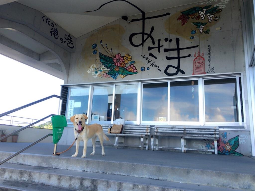 f:id:nagomiyasu-okinawa:20170705161519j:image