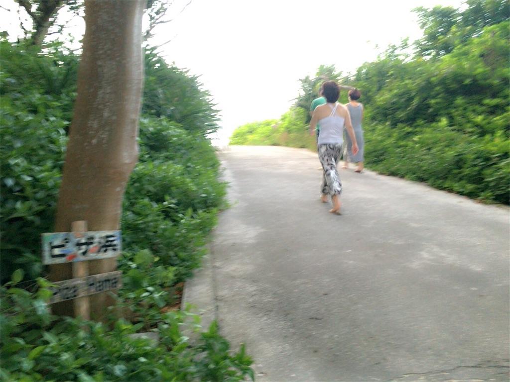 f:id:nagomiyasu-okinawa:20170705162605j:image