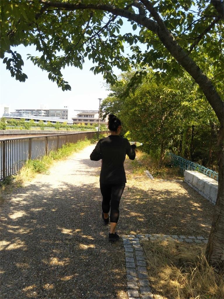 f:id:nagomiyasu-okinawa:20180821102441j:image