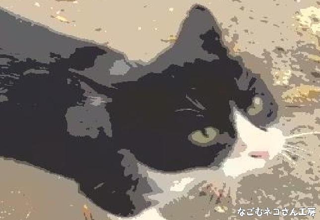 f:id:nagomunekosan_kobo:20210517220234j:plain