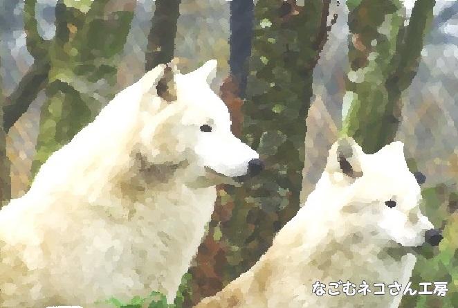 f:id:nagomunekosan_kobo:20210619192527j:plain