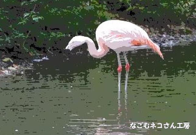 f:id:nagomunekosan_kobo:20210619192532j:plain