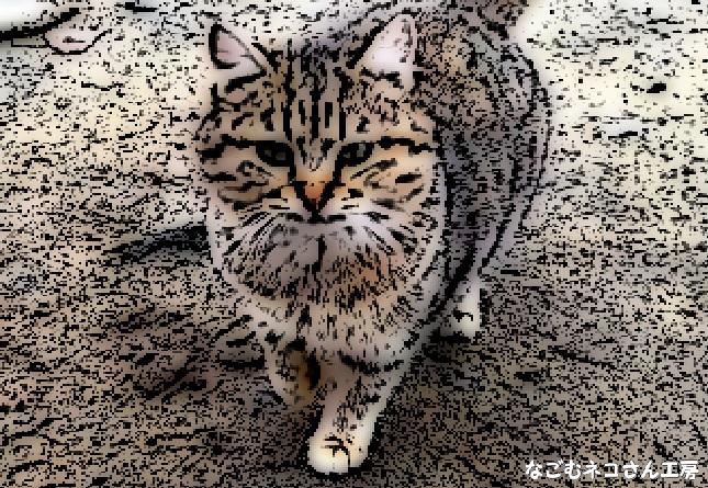 f:id:nagomunekosan_kobo:20210622012113j:plain