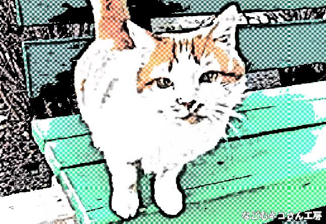 f:id:nagomunekosan_kobo:20210622225548j:plain