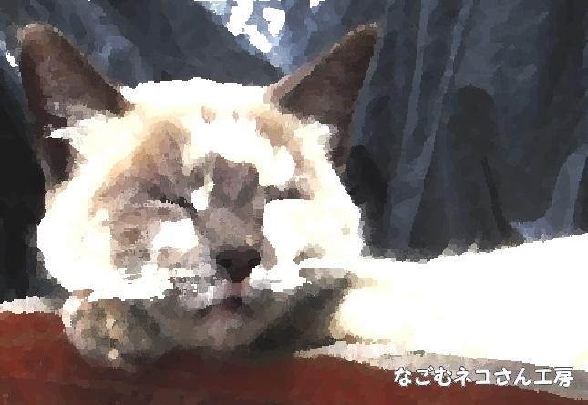 f:id:nagomunekosan_kobo:20210623013553j:plain