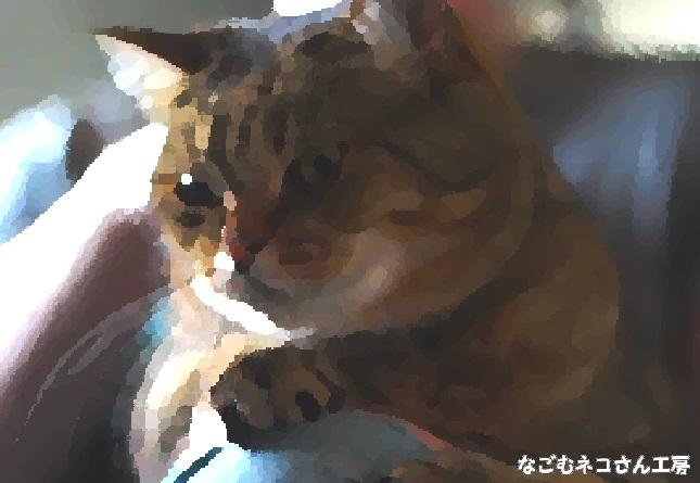 f:id:nagomunekosan_kobo:20210623013556j:plain