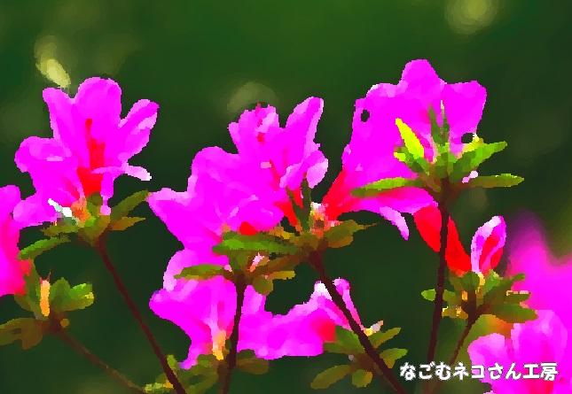 f:id:nagomunekosan_kobo:20210623013616j:plain