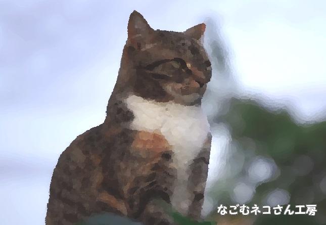 f:id:nagomunekosan_kobo:20210627193624j:plain