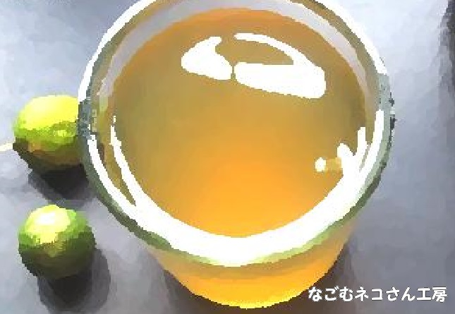 f:id:nagomunekosan_kobo:20210627193628j:plain