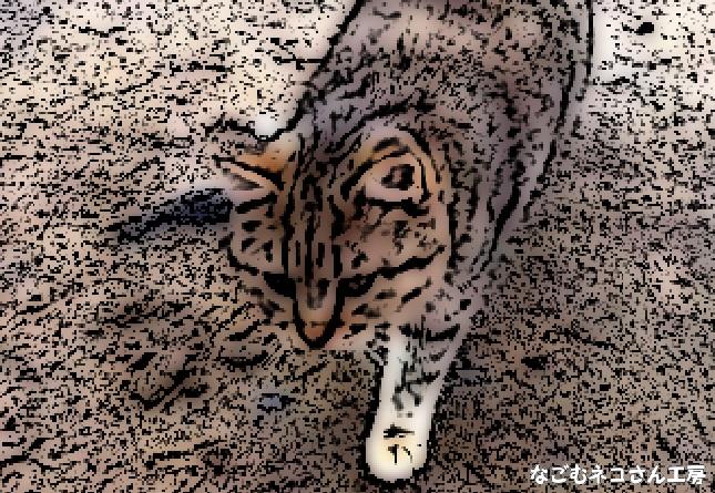 f:id:nagomunekosan_kobo:20210709161124j:plain