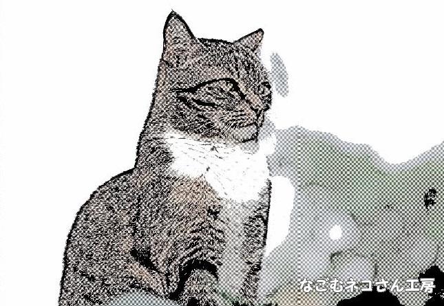 f:id:nagomunekosan_kobo:20210716142011j:plain