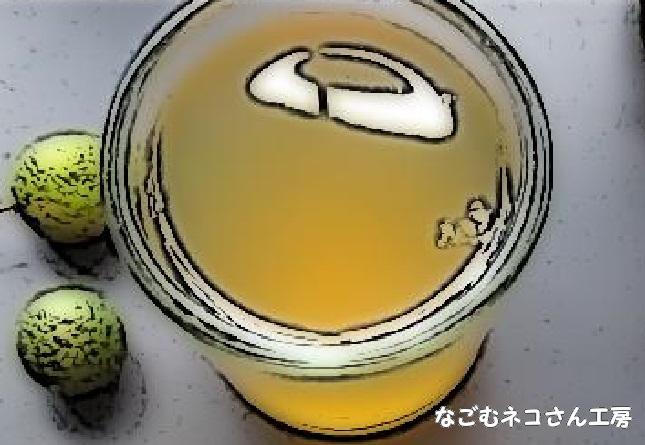 f:id:nagomunekosan_kobo:20210716142016j:plain