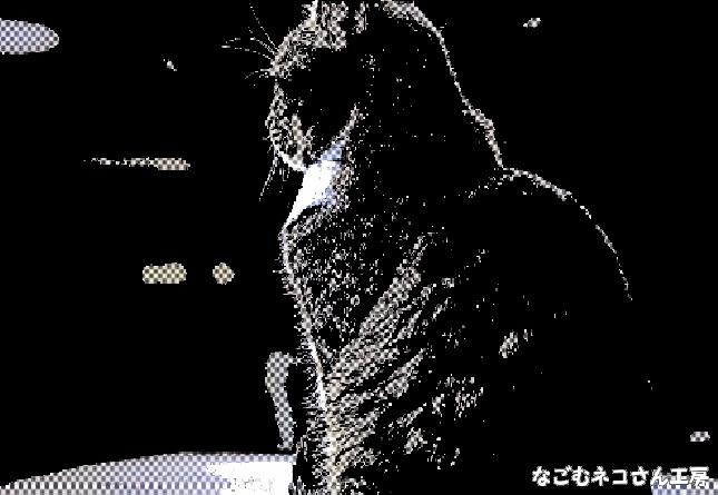 f:id:nagomunekosan_kobo:20210716142019j:plain