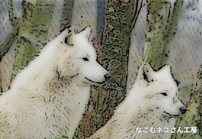 f:id:nagomunekosan_kobo:20210716142023j:plain