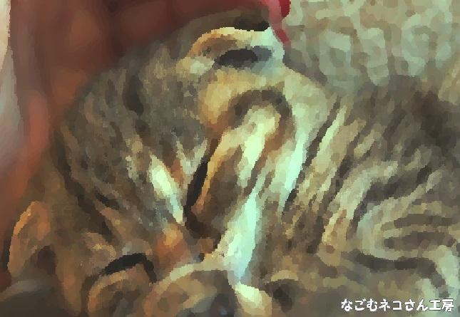 f:id:nagomunekosan_kobo:20210716191017j:plain