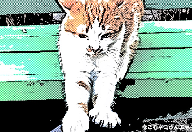 f:id:nagomunekosan_kobo:20210716205536j:plain