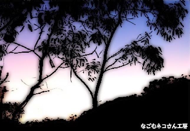 f:id:nagomunekosan_kobo:20210716205545j:plain