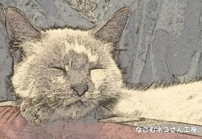 f:id:nagomunekosan_kobo:20210719195505j:plain