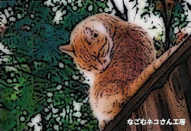 f:id:nagomunekosan_kobo:20210724174633j:plain