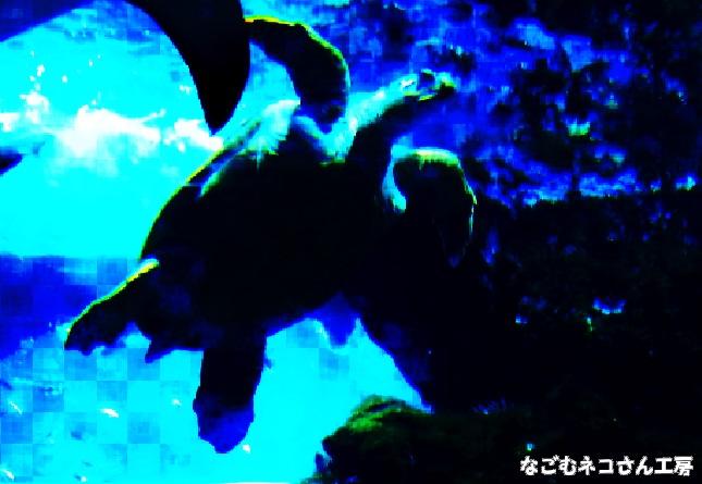 f:id:nagomunekosan_kobo:20210824221544j:plain