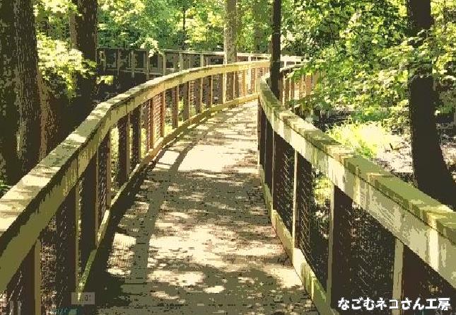 f:id:nagomunekosan_kobo:20210824221553j:plain