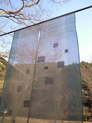 f:id:nagomusi:20120204154444j:image