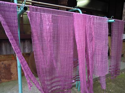 f:id:nagomusi:20120307133237j:image