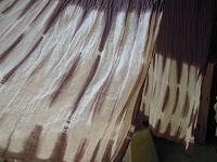 f:id:nagomusi:20120418115959j:image
