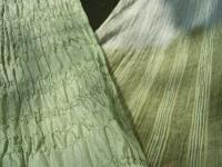 f:id:nagomusi:20120516121157j:image