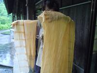 f:id:nagomusi:20120612134915j:image